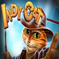 Indy Cat Jugar